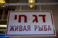 Ryby, Tel Aviv-Yafo