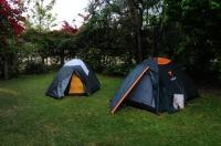 Camp in Addo