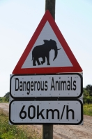 Dangerous Animals in Addo