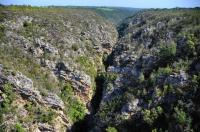 Storms River canyon