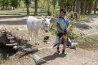 Boy with donkey, Kalinino