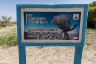 Altyn Emel National Park