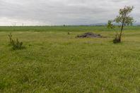 Kara-Balta vicinity