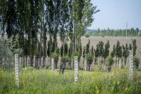 Kyrgyz-uzbek border, Kyrgyzkorgon