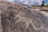 Petroglyfy, Cholpon Ata