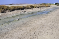Okolí laguny Aliki
