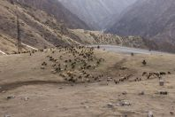 Kyrgyz Range, Tian Shan