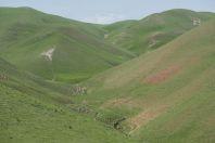 Okolí Džalalabádu