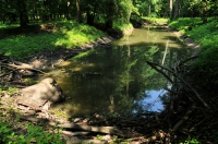 Watercourse, Lanzhot
