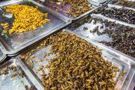 Insect market, Bangkok