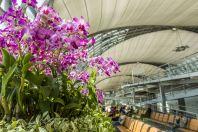 Letiště Suvarnabhumi, Bangkok