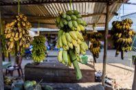 Sale of fruits, Bolaven Plateau