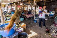 Market, Tadlo
