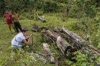 Pseudoscorpiones searching, Bolaven plateau