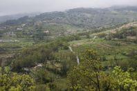 Barouk