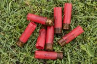 Gun charges, Maaser El Chouf