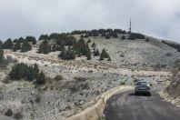 Maasser Cedar Forest, pohoří Libanon