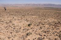 Desert, Hermel