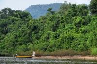 Surroundings of the river Tembeling