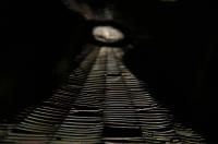 In the cave Telinga