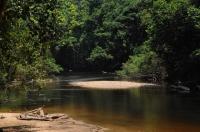 Tahan river