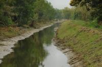 Kuala Selangor reservation