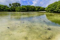 Brakická laguna, Huraa