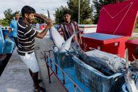 Rybáři z Bangladéše, Huraa