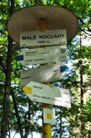 Male noclahy pass