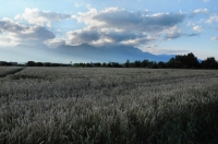Vysoké Tatry z Popradu