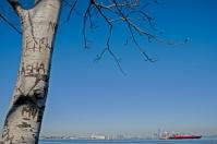 Lower Manhattan from Staten Island