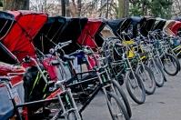 Central Park Rickshaw