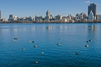 Jacqueline Kennedy Onassis Reservoir, Central Park