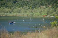 Lake Prespa, Konjsko