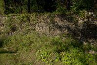 Anguis graeca, habitat, Tregan