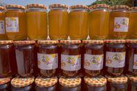 Honey sale, Natyrës Ujë i Ftohtë