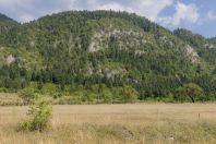 Shelegur-Gërmenj