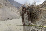 A man with wood, Arkari Valley