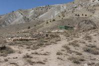 Krajina okolí Parwak