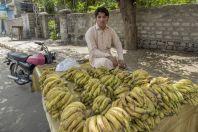 Prodej banánů, Gilgit