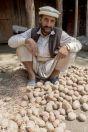Muž třídící brambory, Sharan
