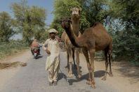 Lidé pouště Thal