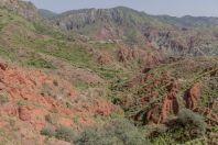 Salte Range
