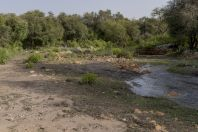 Řeka, Salt Range