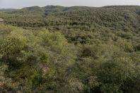 Trnitý les, Salt Range