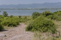 Jezero Rawal, Islamabád