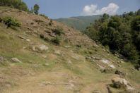Laudakia agrorensis - habitat, Bagrian