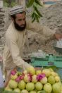 Sale of fruits, Maira Besham Shangla