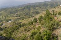 Timergara, Lower Dir