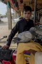Pigeon, Shahbaz Khel